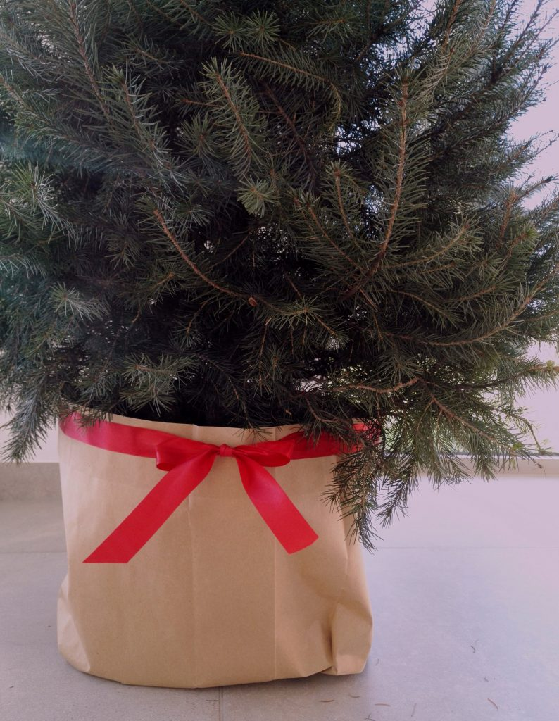 PREPPING YOUR CHRISTMAS TREE